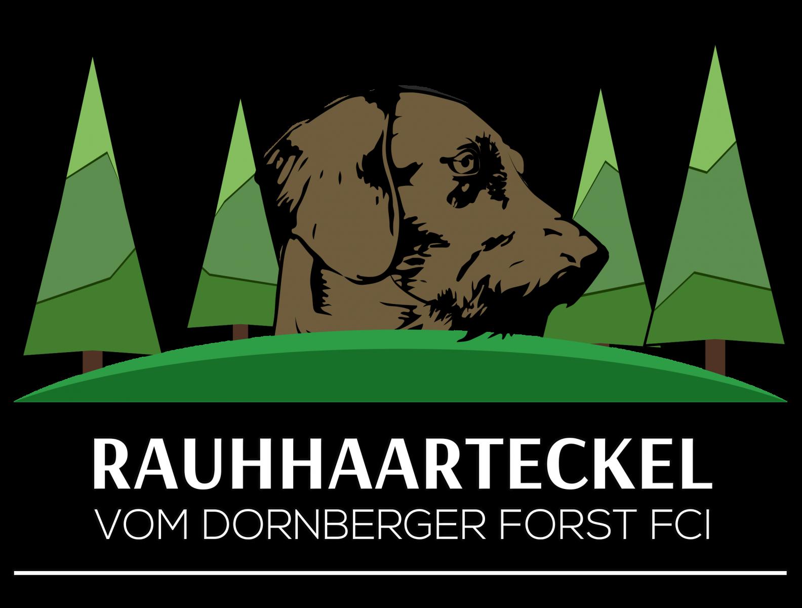Teckel vom Dornberger Forst